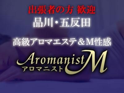 アロマ二ストM